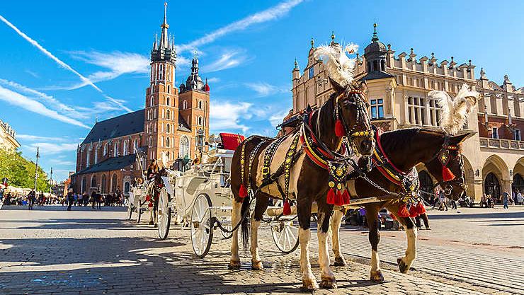 Rundrejse i Polen
